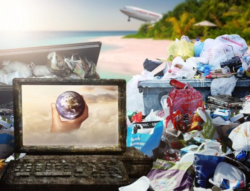 White Paper: Circular Economy Business Models
